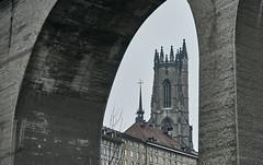 Fribourg, la cathdrale (Meinrad Prisset) Tags: schweiz switzerland nikon suisse fribourg nikkor d800 nikonlens swizzera cantondefribourg cathdraledefribourg nikond800 afsnikkor2485mmvr captureone9