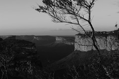 IMG_8285 (hendrix_phooto) Tags: wild bw nature photo photographer picture pic photograph bahia montain chapadadiamantina