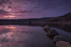 Llyn Colwyd Sunrise (mwng99) Tags: morning sun lake colour reflection wales sunrise landscape fuji purple fujifilm snowdonia eryri capel llyn curig trefriw piws xt1 colwyd