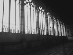 Gothic rithm (angelo.fiorella) Tags: windows light sun white black art architecture gothic rithm