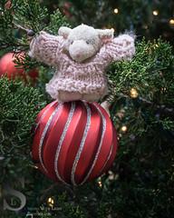 Bahbahra Merry Christmas Happy Holidays_ (Singing With Light) Tags: ny fall photography cool december sony batman 13th mirrorless sonykitlens sony16mm28 bahbahra nycfog singingwithlight singingwithlightphotography sonya6000 sony24240 lightjj