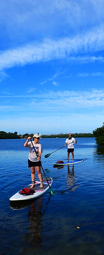 1_8_16 paddleboard tour Sarasota Florida 05