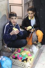 Bird Vendors in the Historical Bazaar, Arak Iran (sharghzadeh) Tags: bird iran bazar arak arakbazaar