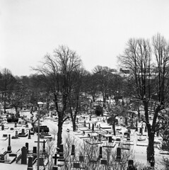 stra Kyrkogrden (rotabaga) Tags: blackandwhite bw cemetery gteborg lomo lomography sweden gothenburg tombstone sverige tmax400 lubitel166 svartvitt gravmonument gravstenar strakyrkogrden bwfp