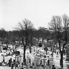 Östra Kyrkogården (rotabaga) Tags: blackandwhite bw cemetery göteborg lomo lomography sweden gothenburg tombstone sverige tmax400 lubitel166 svartvitt gravmonument gravstenar östrakyrkogården bwfp