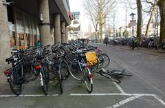Nederland, fietsland! (bcbvisser13) Tags: fietsen fietspad stoep utrecht hoogcatharijne nederland eu bikes city bycicles bcbvisser13