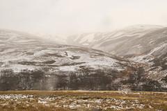 Craig Narb (Glen lethnot) (Keith (foggybummer)) Tags: winter snow angus glen bleak glenlethnot swowing craignarb