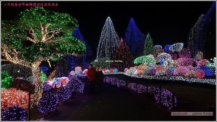 晨靜樹木園 五色星光庭園展 (5).jpg