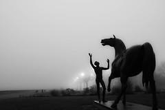 """""""L'adolescent et le cheval"""" (thanh_geneva) Tags: fog genve quai brouillard"""