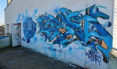 Graffiti, Ancien camping Aytr plage (thierry llansades) Tags: urban painting graffiti graf spray urbanart painter graff larochelle aerosol graffitis graffs grafs charentes charentemaritime aytr aytre frenchgraff