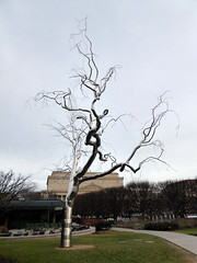 "National Gallery of Art Sculpture Garden - ""Graft"" Roxy Paine (Kwong Yee Cheng) Tags: washingtondc sculpturegarden nationalgalleryofart graft roxypaine"