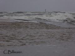 P1020168 (Cintia Billmaier.) Tags: strand mar meer marejada playa welle ola cantabria suances arbolada lumixtz60