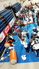 Serie A ginnastica rimini 2016 www.airtrackitalia.it www.airtrack-italia.com  #AirTrackItalia #airtrack #MINIairtrack #ginnasticaartistica #ginnastica #ginnasticapassione #ginnaste #ginnasti #piccoleginnaste #piccoleginnastecrescono #gymnastics #gymnastic (Air Track Italia) Tags: sports sport fun jump www gymnast gymnastics flick flic gymnastic acrobatica airtrack ginnastica gymnastique salti acrobazie ginnasta ginnasticaartistica saltimortali ginnasti ginnaste rondata instasport airtrackitalia gymnasticsshoutouts ginnasticapassione miniairtrack rondatasalto piccoleginnaste rondatasaltoindietro piccoleginnastecrescono rondataflicksalto