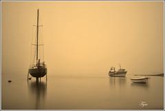 Un soir  Brignogan (Photofym) Tags: mer monochrome port pose soir voilier calme longue minimaliste