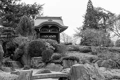 Japanese Garden (Matthew Soar) Tags: kewgardens nikon d800 2470mm28