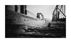Holga 120 WPC - Adox CMS 20 (dcanalogue) Tags: street camera city panorama white black art history classic film vintage landscape ancient pin cityscape hole roman forum hill wide wideangle panoramic ishootfilm pinhole colosseum iso palatino developer classical coliseum fx 39 find isf colosseo palatine steno stenope adox fx39 filmisnotdead stenopeica f135 classicblackwhite filmforever stenopheica stenophaeic
