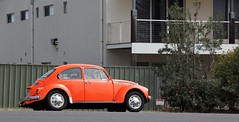 no worries (sunphlo) Tags: orange car vw bug beetle parked pastie volkswagon noworries