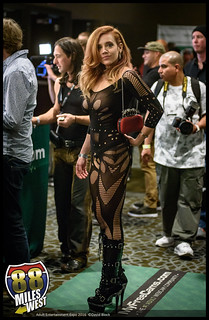Adult Entertainment Expo 2016
