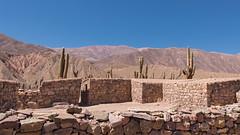 Ruinas el Pucar de Tilcara (..Javier Parigini) Tags: argentina nikon flickr paisaje cerro ruinas nikkor f28 norte noa montaas jujuy tilcara d800 1424mm javierparigini elpucaradetilcara