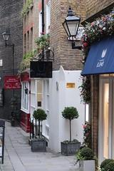 Tucked Away (haberlea) Tags: street plants tree london lamp sign shop pots laurel mayfair