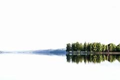 Sliders sunday (anek07) Tags: blue trees summer sky white mist lake reflection tree green water misty landscape mirror sweden january himmel reflect highkey sverige vatten träd januari reflektion sommar värmland sjö hss vit spegel fryken sliderssunday