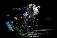 (artsuephotographie) Tags: show horse cheval avignon cascade gala spectacle voltige chevalpassion artsue criniredor