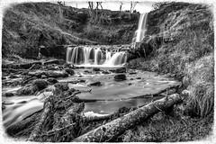 Blaen-Y-Glyn Falls (karlmccarthy1969) Tags: wood uk longexposure blackandwhite bw water beautiful grass wales waterfall log frame