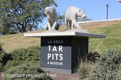 Los Angeles La brea tar pits  (5 of 50) (frank j skokoski's green ridge photography) Tags: california losangeles tar tarpits labreatarpits