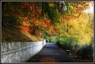New Lanark in Autumn