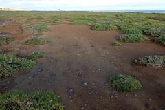 DSCF5690 (FredrikBeskow) Tags: strand islands sand fuerteventura canary morro kanariearna jandia jable
