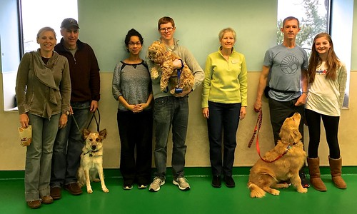 """Class photo, Obedience 1, Session L, Fall 2015-Sat • <a style=""""font-size:0.8em;"""" href=""""http://www.flickr.com/photos/65918608@N08/24886447690/"""" target=""""_blank"""">View on Flickr</a>"""
