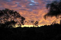 Sunrise (Neil Saunders) Tags: morning sunrise sydney