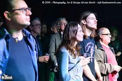 2016 Bosuil-Het publiek bij The Paladins en Cats on the Corner 23