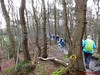 """2016-03-30      Korte Duinen   Tocht 25.5 Km (47) • <a style=""""font-size:0.8em;"""" href=""""http://www.flickr.com/photos/118469228@N03/25535782114/"""" target=""""_blank"""">View on Flickr</a>"""
