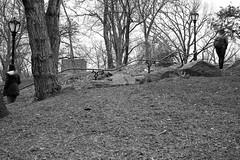 XT1-04-25-15-56-2 (a.cadore) Tags: nyc newyorkcity blackandwhite bw landscape centralpark candid uptown fujifilm xf27mmf28 fujifilmxt1