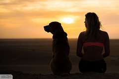 Looking on the bright side of life (creativeway.ch) Tags: friends sunset dog girl view friendship stunning sharing goldenhour surfergirl