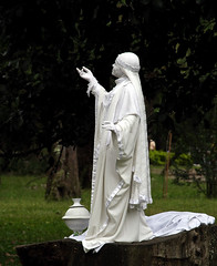 Living Statue   -    Estatua viviente (Coming back, slowly) Tags: brazil canon saopaulo artistascallejeros ibirapuera dslr streetartists