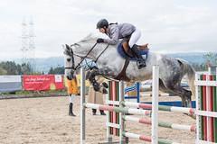 DSC08722_s (AndiP66) Tags: springen hildisrieden reitsportcenter estermann traselinge 2016 september pferd horse schweiz switzerland kantonluzern cantonlucerne concours wettbewerb horsejumping equestrian sports springreiten pferdespringen pferdesport sport sony sonyalpha 77markii 77ii 77m2 a77ii alpha ilca77m2 slta77ii sony70400mm f456 sony70400mmf456gssmii sal70400g2 andreaspeters luzern ch