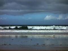 Praia Amrica 06 un da de lluvia (Pepe Fernndez) Tags: autumn mar paisaje nubes otoo olas gaviotas panxn nigrn playaamrica praiaamrica