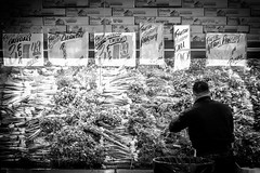 (112/366) Produce Man (CarusoPhoto) Tags: bw food man shop work canon project john shopping photo store day greens produce 365 everyday caruso mundane banal ordinary s90 366 carusophoto