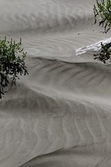 Black sand patterns 3 (bichane) Tags: canada black west beach coast sand bc britishcolumbia patterns vancouverisland tofino windblown