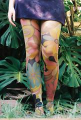 Floral (Katie Tarpey) Tags: selfportrait reflection film stockings grass self 35mm mirror hand legs kodak pins retro nikonfm10 miniskirt monstera monsteradeliciosa kodakportra400 nikkor50mm14 floralstockings