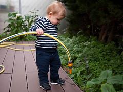 Arrosage (Dahrth) Tags: baby garden lumix raw jardin spray hose littleboy bb sprinkle gf1 petitgaron micro43 panasoniclumixgf1 20mmpancake gf120 microquatretiers