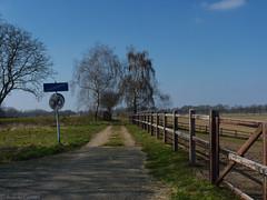Countryside Gebroek (Nelleke C) Tags: road netherlands landscape countryside spring nederland limburg weg landschap platteland voorjaar 2016 gebroek dedoort