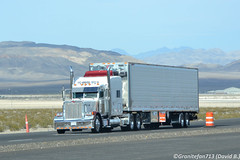 Unknown Peterbilt 379 (NV) (Trucks, Buses, & Trains by granitefan713) Tags: tractor chrome van stainless sleeper peterbilt classy 18wheeler tractortrailer bigrig showtruck longhaul largecar 379 longhood peterbilttruck dryvan peterbilt379 trucktractor vantrailer sleepertractor sharptruck