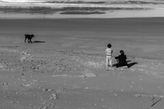 A boy's best friend is his mother- Anthony Perkins- (Psicosis, 1960) (jcfasero) Tags: boy sea espaa dog beach movie mujer spain ngc mother playa cine perro nio madre cantabria noja