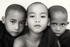 Buddhist novices, Myanmar (Burma) (Dietmar Temps) Tags: travel school portrait people blackandwhite kids children 50mm asia asien southeastasia sdostasien faces outdoor yangon burma buddhist traditional culture naturallight buddhism monks myanmar mon shan tradition pali ethnic burmese birma mandalay bagan rangoon ethnology birmanie birmania mianmar bamar ethnie mawlamyine