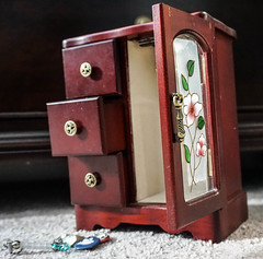 Small Cupboard (HSBasra) Tags: wood flowers red brown abstract macro toy empty small indoors cupboard
