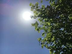 (Gundogusu) Tags: sun izmir gne