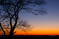 JML-2016-IMG_8732 (photo.jml) Tags: sunset coucherdesoleil couleurs colors ciel sky silhouette